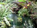 1 lagoon 3