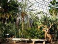 2 arid dome